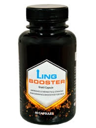 Lingbooster Price
